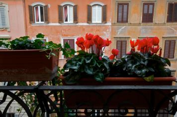 Hotel Concordia | Rome | Hotel Concordia, Rome - Photo Gallery - 16